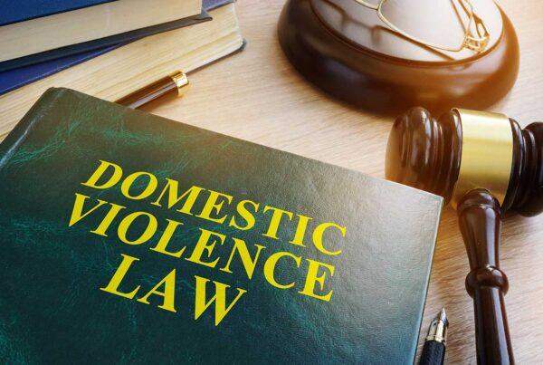 domestic violence in sonoma county